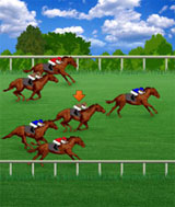 Royal Derby on Mobile